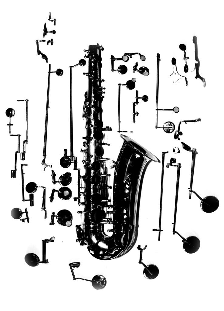 Anatomie des Saxophons